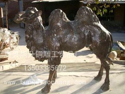 动物铜雕_铜雕骆